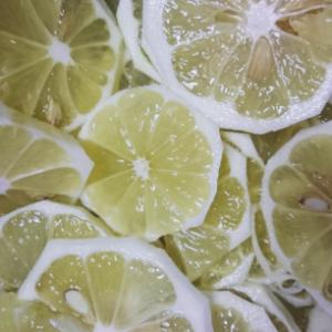 レモン輪切り